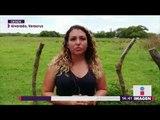 Qué pasará con los cuerpos encontrados en esta fosa de Veracruz   Noticias con Yuriria