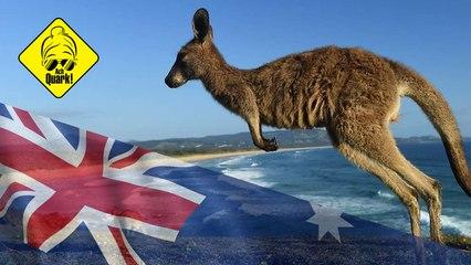 10 Fakten über Australien [AchQuark!]
