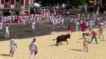 Une femme ne survit pas après avoir été percutée par un taureau lors d'une fête dans le Gard !
