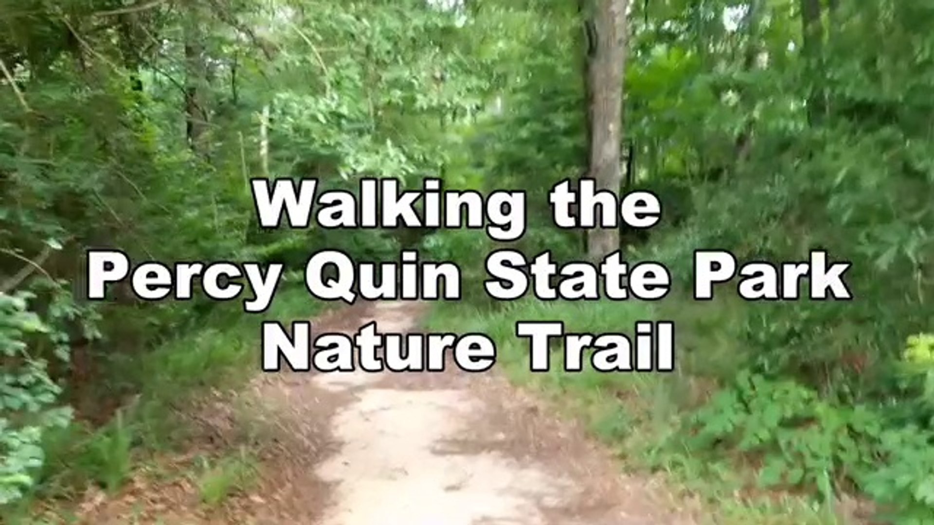 Walking The Nature Trail At Percy Quin State Park In Mccomb Mississippi