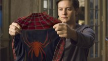 Tobey Maguire: Spider-Man Sequel Cameo?