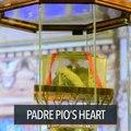 Bishop hits killings as Padre Pio heart relic visits UST