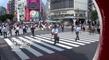 Bande-annonce : Vivre le Japon en France - Inédit