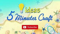 5 Minute Crafts Ideas  You'll surprise your friends with this gift  #25