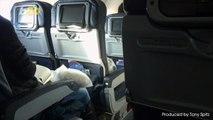 Flight Attendants Dish on the Grossest In-Flight Moments