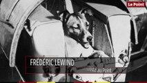 3 novembre 1957 : le jour où la chienne Laïka est mise sur orbite