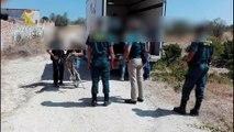 Guardia Civil rescata en Madrid a 28 perros y 1 caballo de una perrera ilegal que estaban en condiciones lamentables