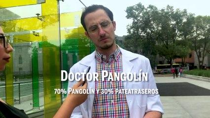 ¿Quién es Dr. Pangolín? Revista Cambio lo buscó y esto fue lo que nos dijo