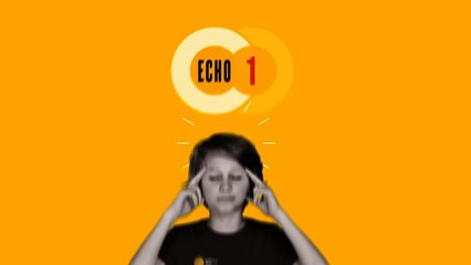 Echo_1 - Les ICOs vont-elles s'imposer en France ?