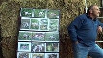 Hautes-Alpes : le nouveau référent pour le plan national d'action sur le loup face aux éleveurs ce jeudi dans le Dévoluy