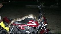 Il tente de capturer un serpent enorme qui s'est réfugié sur une moto