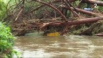 Intempéries : les rivières obstruées par des débris végétaux ?