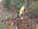 Un garçon et son chien sautent dans un tas de feuille