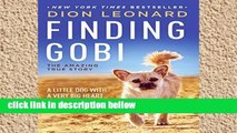 Library  Finding Gobi: A Little Dog with a Very Big Heart