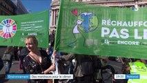 Environnement : des marcheurs pour le climat