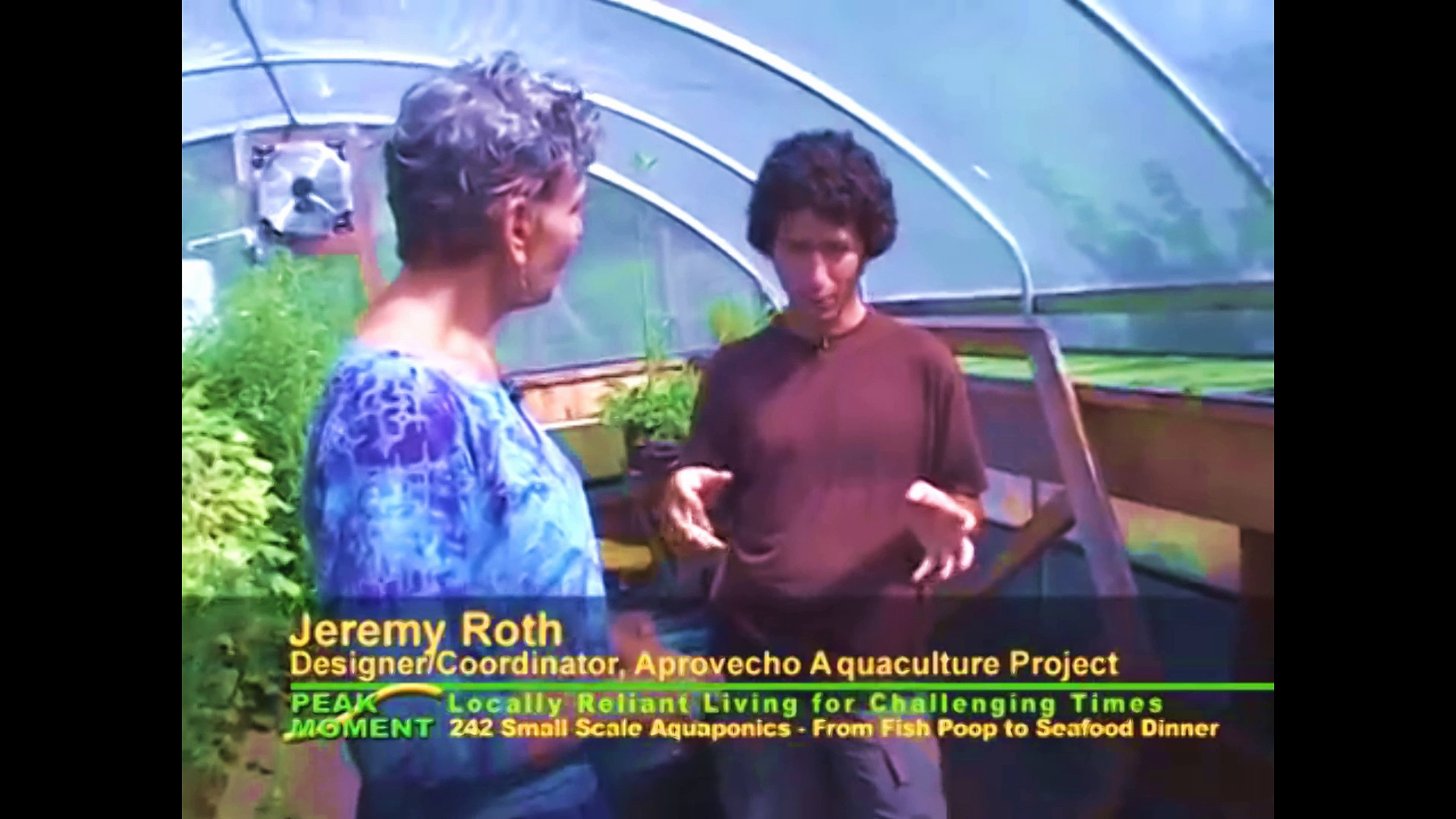Small Scale Aquaponics System – Grow Your Own Food Sustainability