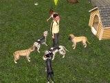 Vidéo du jeu les sims 2 animaux & cie !