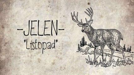 Jelen - Listopad