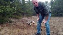 Un homme se balade avec ses enfants en forêt et découvre un loup coincé dans un piège