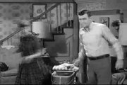 Andy Griffith S05E13 Andy and Helen Have Their Day