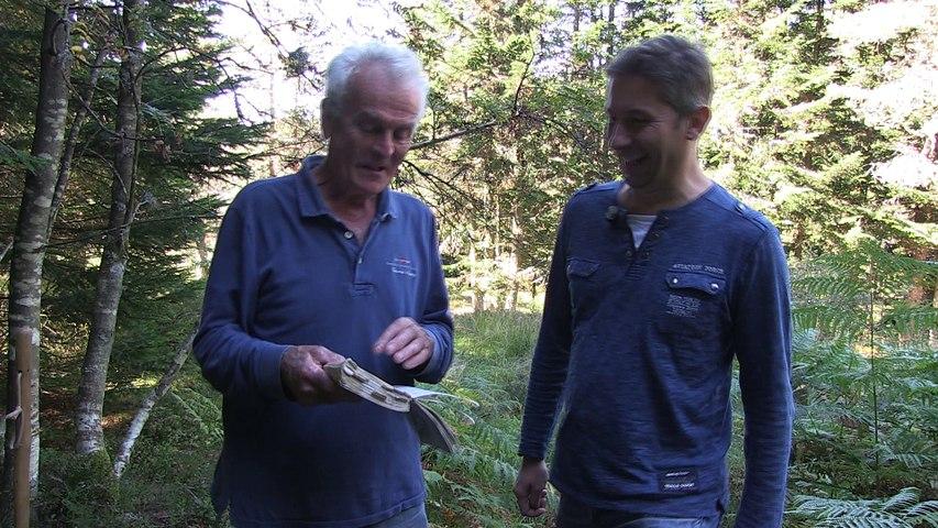 On ramasse et on cuisine les champignons avec Jacques Marcon
