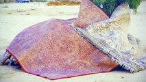 Ron Amir - Quelque part dans le désert | Musée d'Art moderne