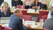 Commission des affaires étrangères : M. Jean-Baptiste Lemoyne, Secrétaire d'État auprès du ministre de l'Europe et des Affaires étrangères - Mercredi 17 octobre 2018