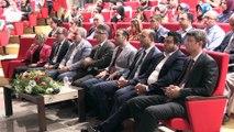 'Yöresel Ürünler ve Kilis Zeytinyağı Festivali' - KİLİS