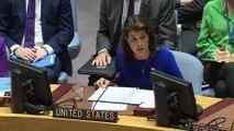 Birleşmiş Milletler Güvenlik Konseyi toplantısı - NEW YORK