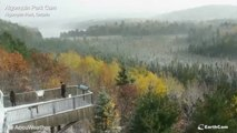 Timelapse shows snow falling on fall foliage