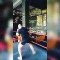 Training Time @ ZambidisClub in Glyfada! #ironmikezambidis #zambidisclub #training #bethebestyou #boxing #kickboxing #gym