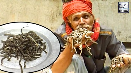 A Man Eats More Than 100 Cobra Snakes Alive