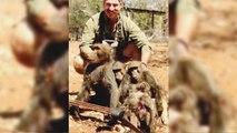 Un responsable de vida salvaje en EEUU mata a una familia de babuinos en África