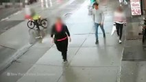 WATCH VIDEO: Purse snatcher drags woman to ground during Brooklyn robbery | US Today News