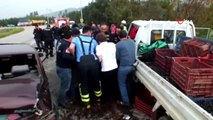 Otomobil Karşı Yönden Gelen Kamyonete Çarptı... Kaza Sonrası Karayolu Zeytin Tarlasına Döndü