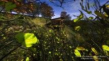 cabane écologique perché sur la montagne : pilotis ossature métallique + panneaux bois & bardage bois