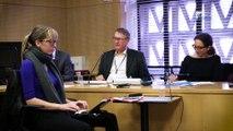 Questions à Thierry LIBAERT (CESE Européen) - Métaux stratégiques - cese