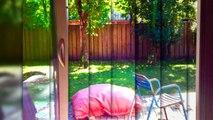 A vendre - Maison/villa - Lege cap ferret (33950) - 5 pièces - 160m²