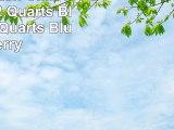 Takeya Flash Chill Tea Maker 2 Quarts Blueberry 2 Quarts Blueberry