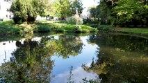 Amiens,  lauréate du label « Ville des zones humides » - Convention de Ramsar