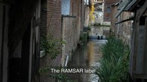 Pont-Audemer, lauréate du label « Ville des zones humides » - Convention de Ramsar