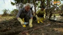 TV Special River Monsters S00E00 Killer Weapons Part.2