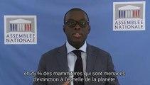 """PLF 2019 : Mission """"Écologie, développement et mobilité durables"""" - Vendredi 26 octobre 2018"""