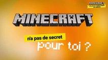 Jeu concours Minecraft - Villes et territoires de demain
