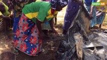 L'agroécologie pour nourrir le Burkina