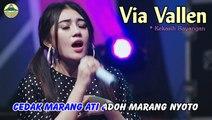 Via Vallen ~ Kekasih Bayangan   |   Official Video