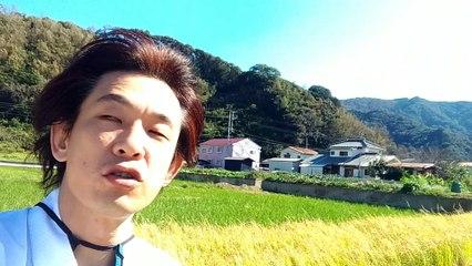 2018年立川こしら伊豆・松崎稲刈り合宿01