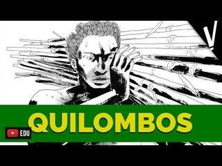 O QUILOMBO DOS PALMARES │ História do Brasil