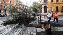 Intempéries mortelles en Italie, chutes de neige en France
