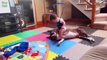 Dogs and Babies are Best Friends AMAZING Vedio 2018, SPECIAL VEDIO For Children babies and All Kids